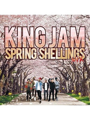 【CD】KING JAM SPRING SHELLINGS MIX -mixed by KING JAM-